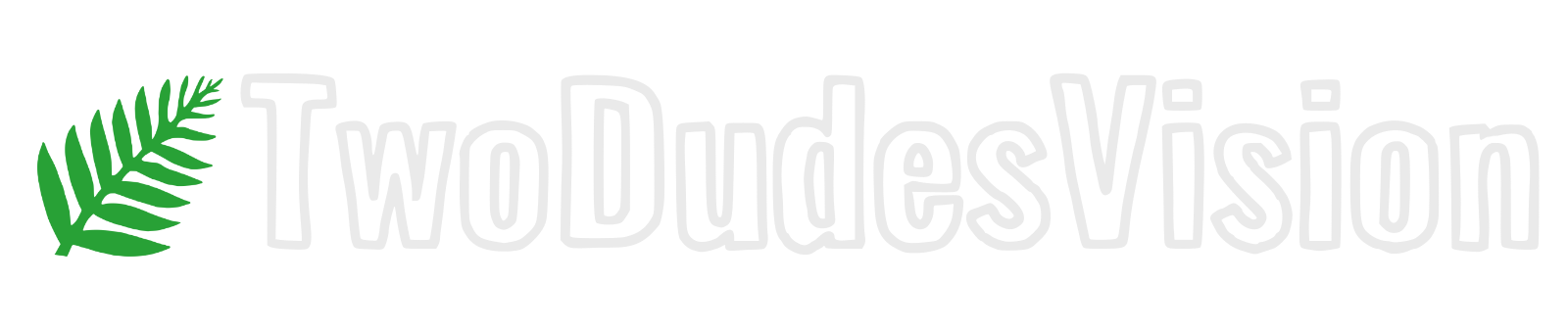 TwoDudesVision
